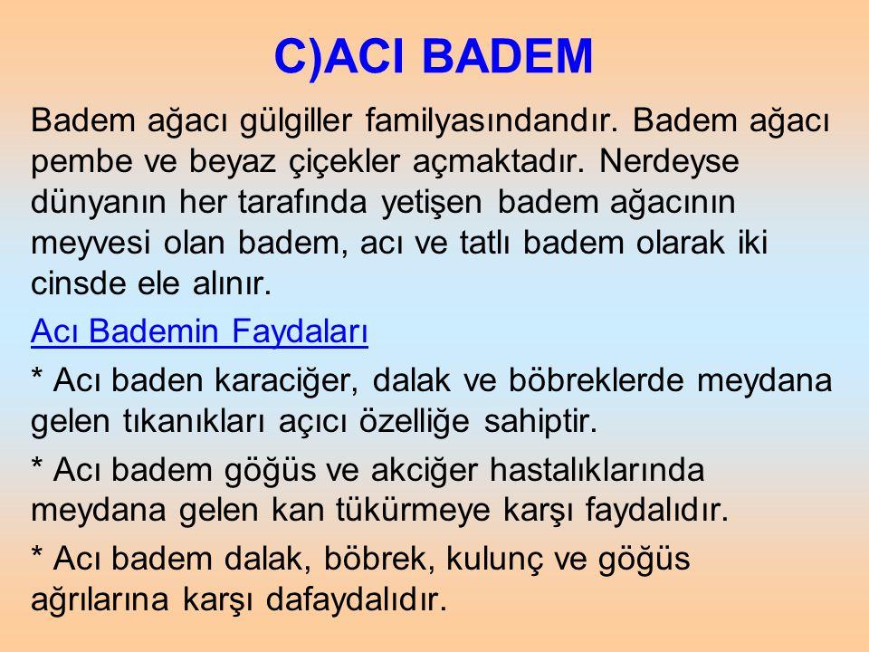 C)ACI BADEM Badem ağacı gülgiller familyasındandır. Badem ağacı pembe ve beyaz çiçekler açmaktadır. Nerdeyse dünyanın her tarafında yetişen badem ağac