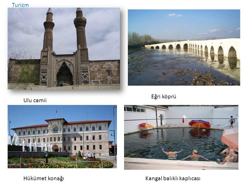 Turizm Ulu camii Eğri köprü Hükümet konağıKangal balıklı kaplıcası