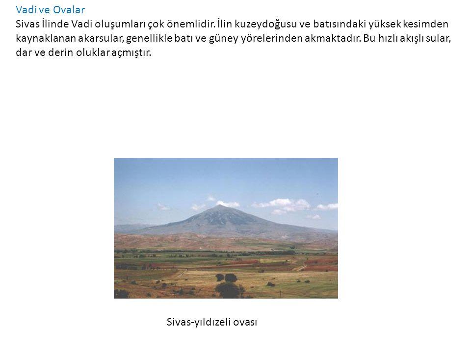 Platolar-Yaylalar Sivas'ta platolar en önemli yeryüzü şeklini oluşturur.