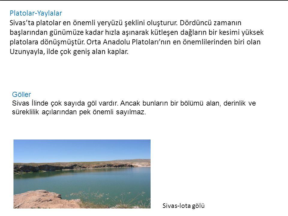 Platolar-Yaylalar Sivas'ta platolar en önemli yeryüzü şeklini oluşturur. Dördüncü zamanın başlarından günümüze kadar hızla aşınarak kütleşen dağların
