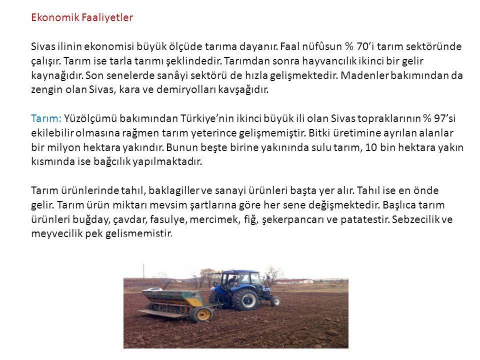 Ekonomik Faaliyetler Sivas ilinin ekonomisi büyük ölçüde tarıma dayanır. Faal nüfûsun % 70'i tarım sektöründe çalışır. Tarım ise tarla tarımı şeklinde
