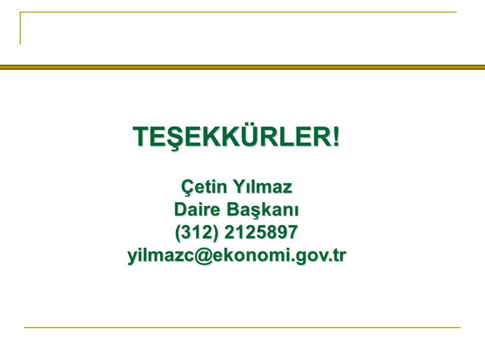 TEŞEKKÜRLER! Çetin Yılmaz Daire Başkanı (312) 2125897 yilmazc@ekonomi.gov.tr