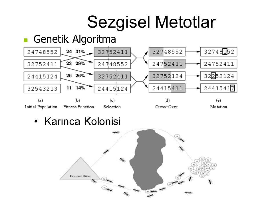 Sezgisel Metotlar Karınca Kolonisi Genetik Algoritma