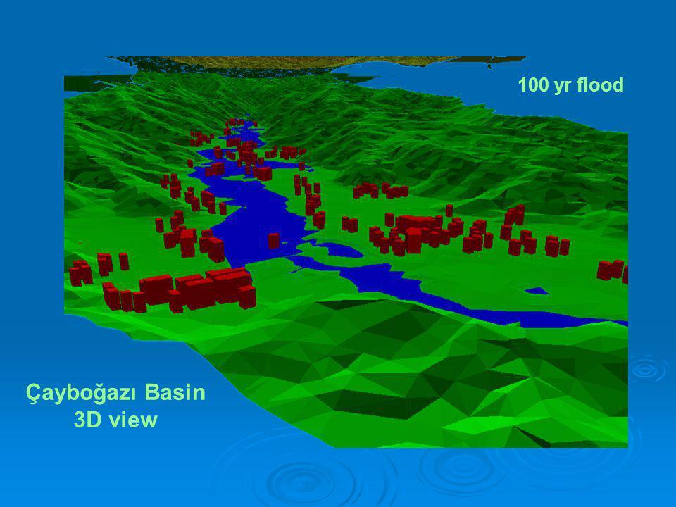 Çayboğazı Basin 3D view 100 yr flood