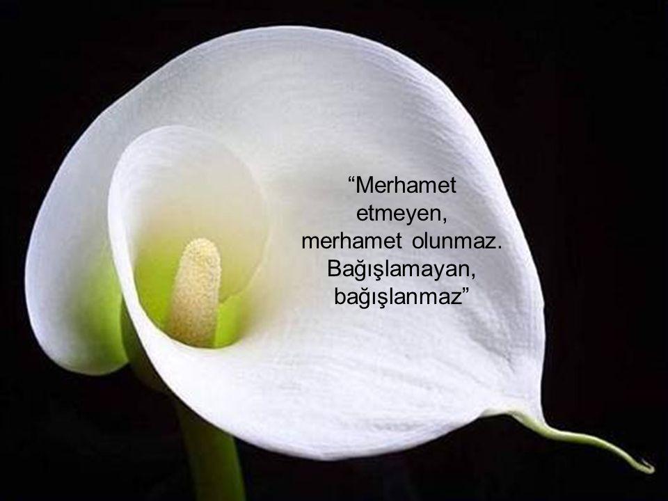 """""""Merhamet etmeyen, merhamet olunmaz. Bağışlamayan, bağışlanmaz"""""""