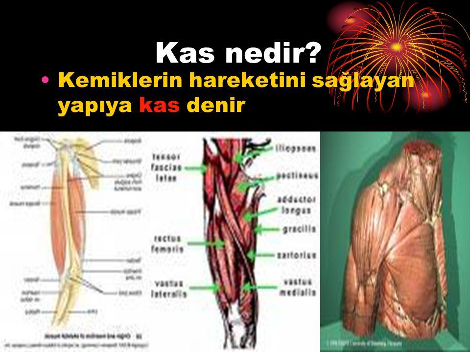 İnsanların hareketini sağlayan yapı  Kemikler  Eklemler  Kaslardır Kemik,kas ve eklemlerimiz birlikte çalışarak;  Vücudumuzun şeklini verir.