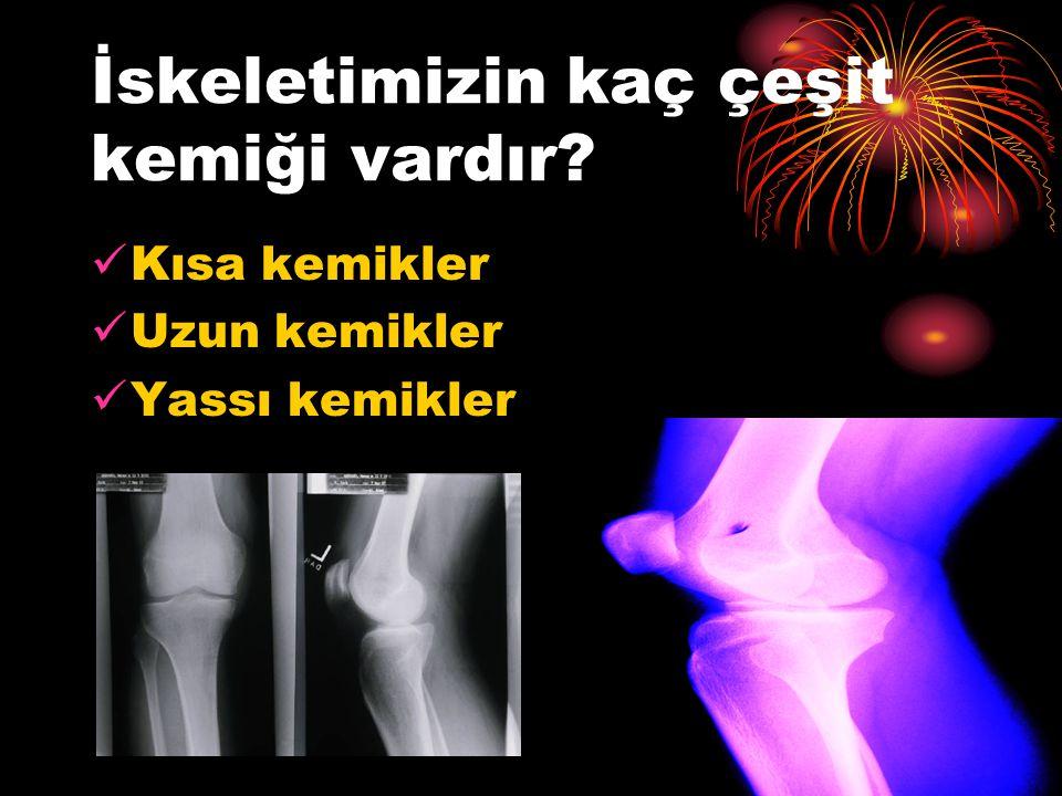Kısa kemikler Bilek ve omur kemikleri