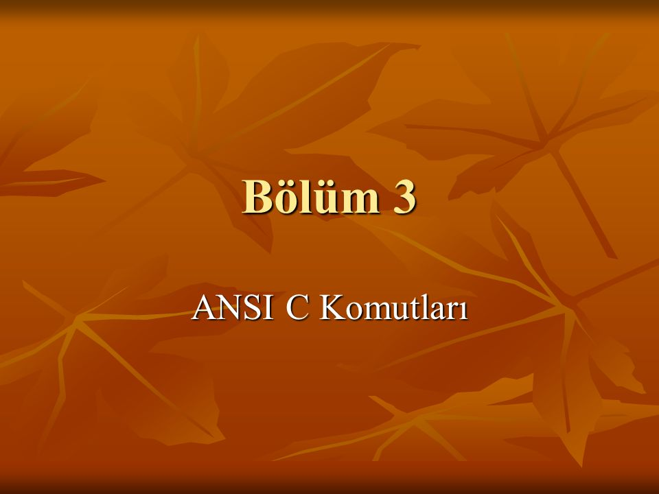 Bölüm 3 ANSI C Komutları