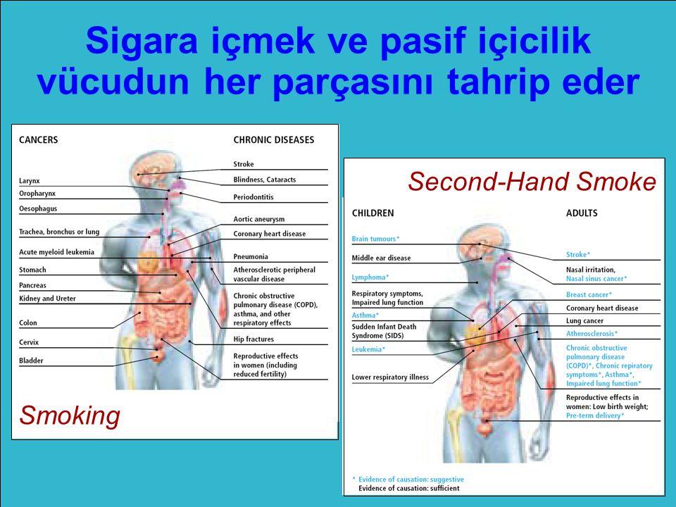 Sigara içmek ve pasif içicilik vücudun her parçasını tahrip eder Smoking Second-Hand Smoke
