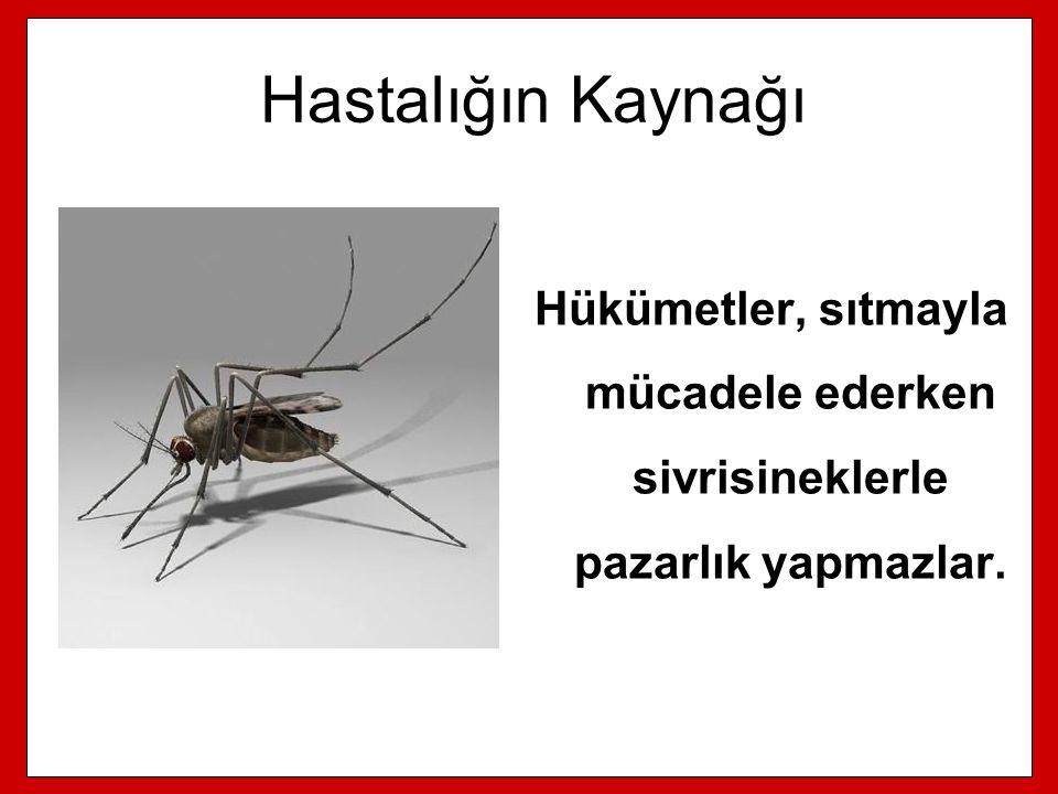 Hastalığın Kaynağı Hükümetler, sıtmayla mücadele ederken sivrisineklerle pazarlık yapmazlar.