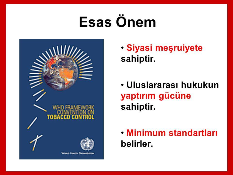 Esas Önem Siyasi meşruiyete sahiptir. Uluslararası hukukun yaptırım gücüne sahiptir. Minimum standartları belirler.