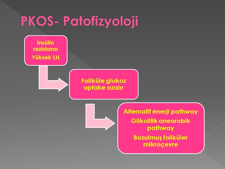 İnsülin rezistansı Yüksek LH Foliküle glukoz uptake azalır Alternatif enerji pathway Glikolitik aneorobik pathway Bozulmuş foliküler mikroçevre