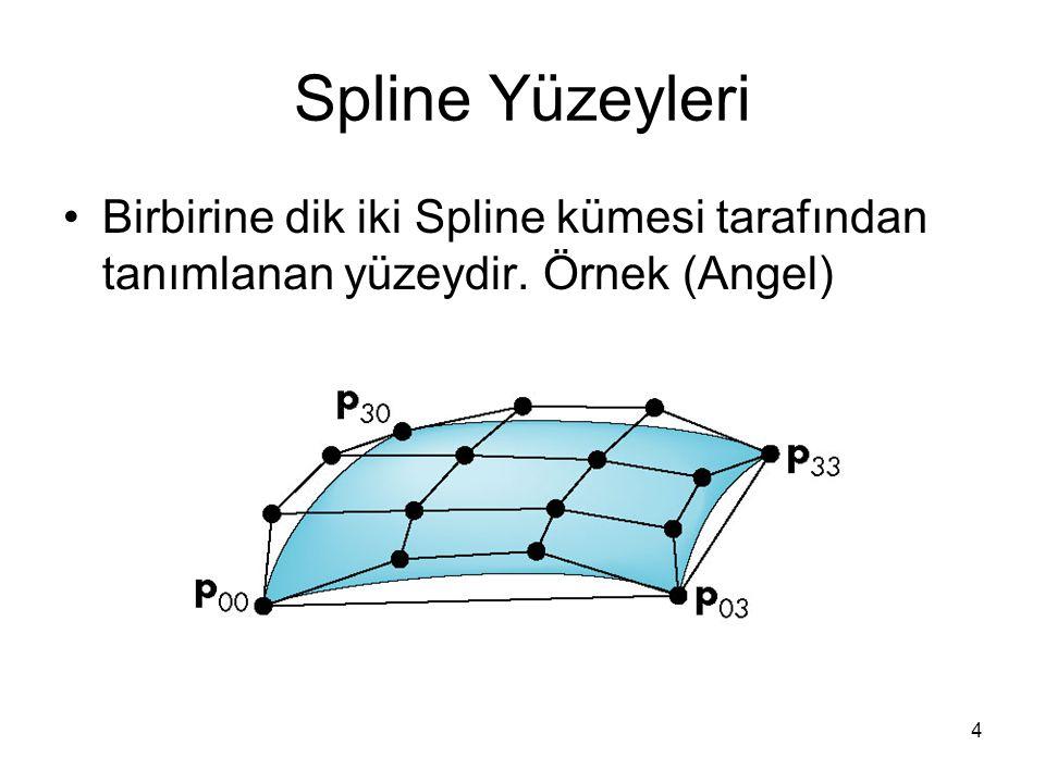 4 Spline Yüzeyleri Birbirine dik iki Spline kümesi tarafından tanımlanan yüzeydir. Örnek (Angel)