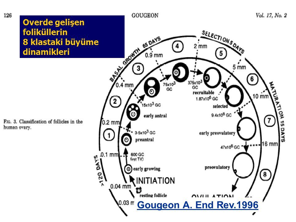 Gougeon A. End Rev.1996 Overde gelişen foliküllerin 8 klastaki büyüme dinamikleri