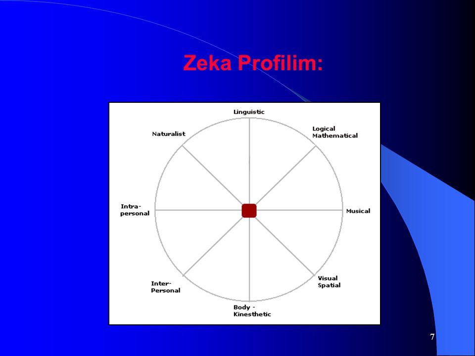 7 Zeka Profilim: