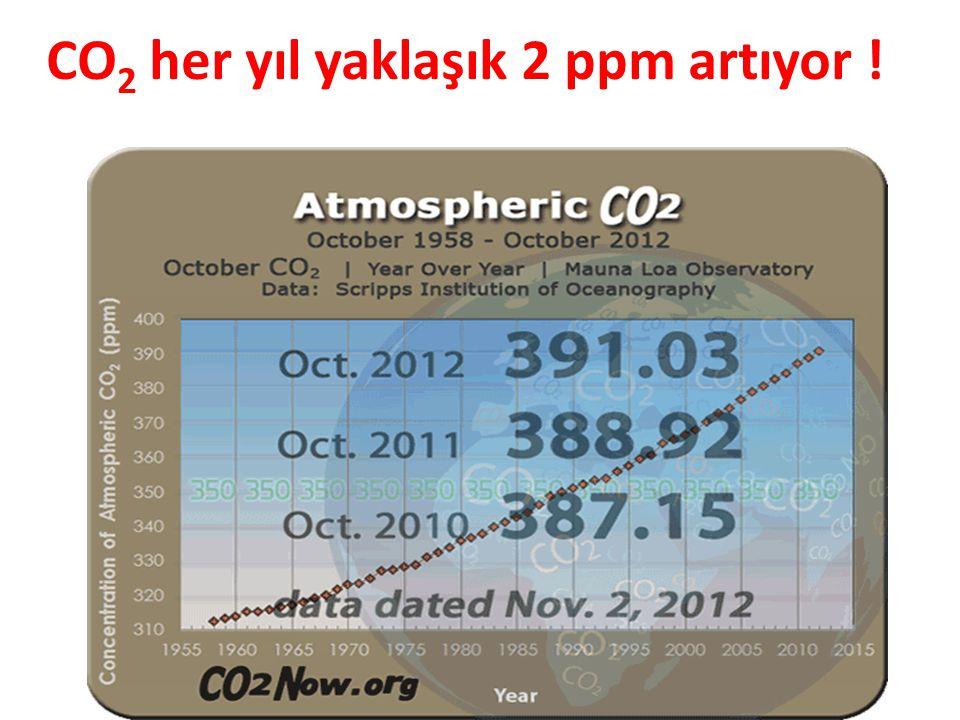 CO 2 her yıl yaklaşık 2 ppm artıyor !
