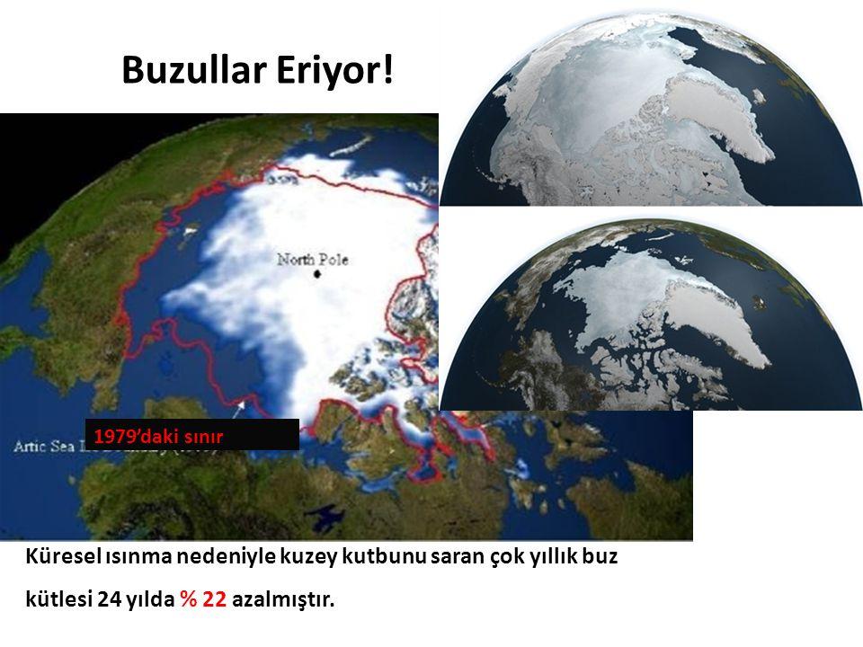 Küresel ısınma nedeniyle kuzey kutbunu saran çok yıllık buz kütlesi 24 yılda % 22 azalmıştır. Buzullar Eriyor! 1979'daki sınır
