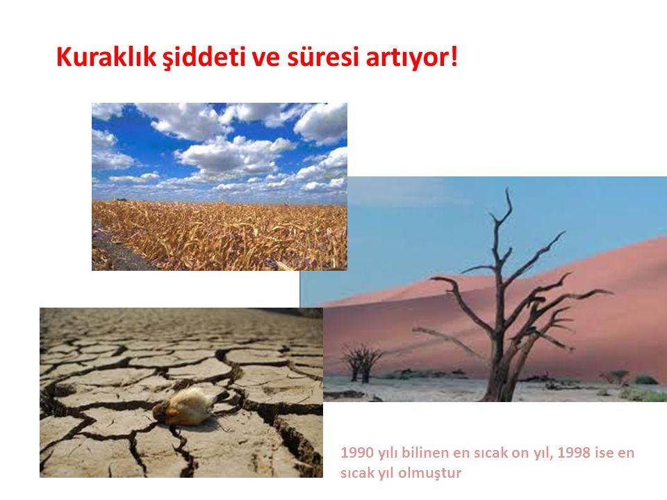 Kuraklık şiddeti ve süresi artıyor! 1990 yılı bilinen en sıcak on yıl, 1998 ise en sıcak yıl olmuştur