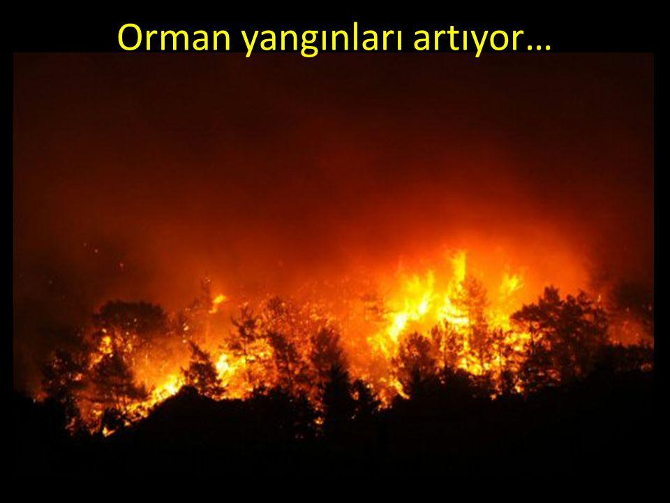 Orman yangınları artıyor…