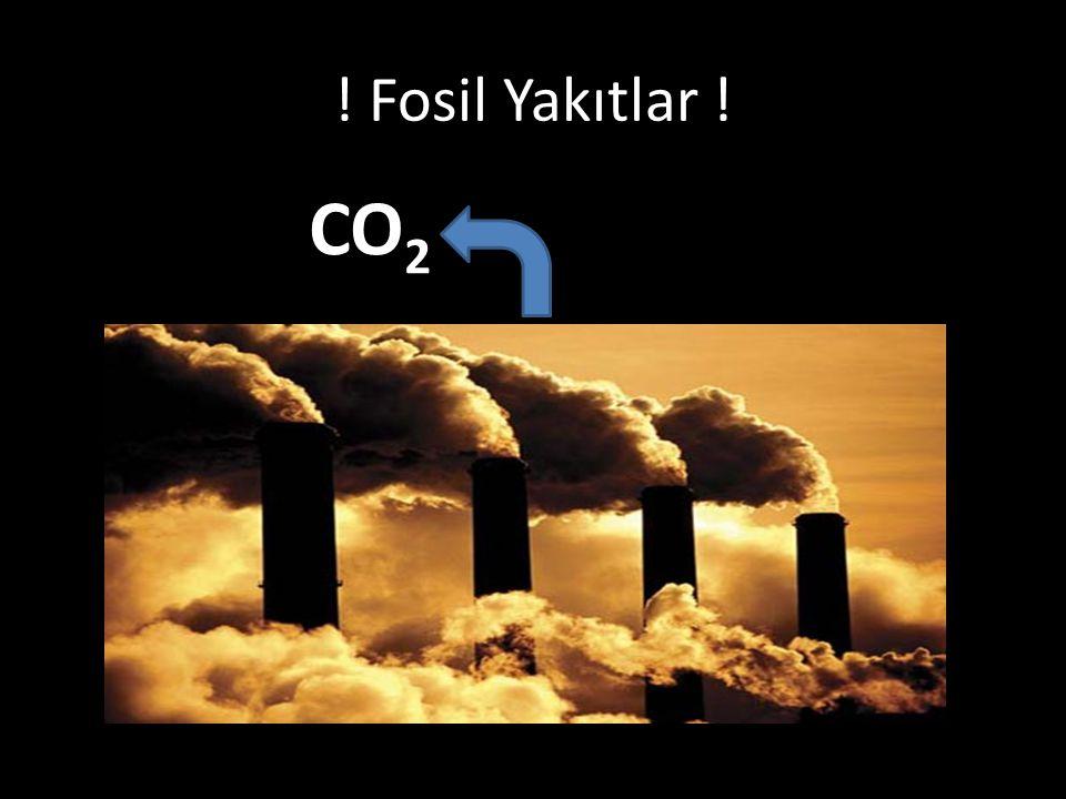 ! Fosil Yakıtlar ! CO 2