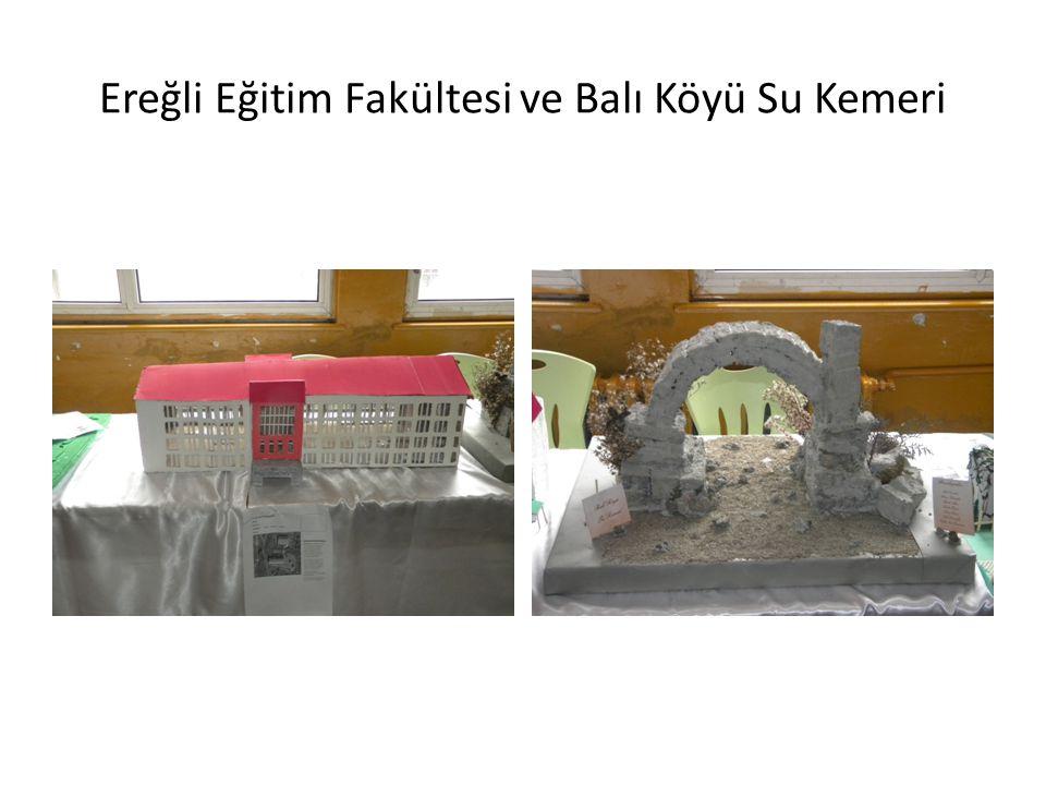Ereğli Eğitim Fakültesi ve Balı Köyü Su Kemeri