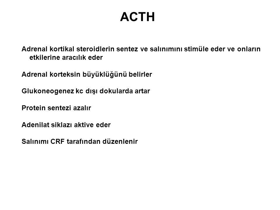 ACTH Adrenal kortikal steroidlerin sentez ve salınımını stimüle eder ve onların etkilerine aracılık eder Adrenal korteksin büyüklüğünü belirler Glukon