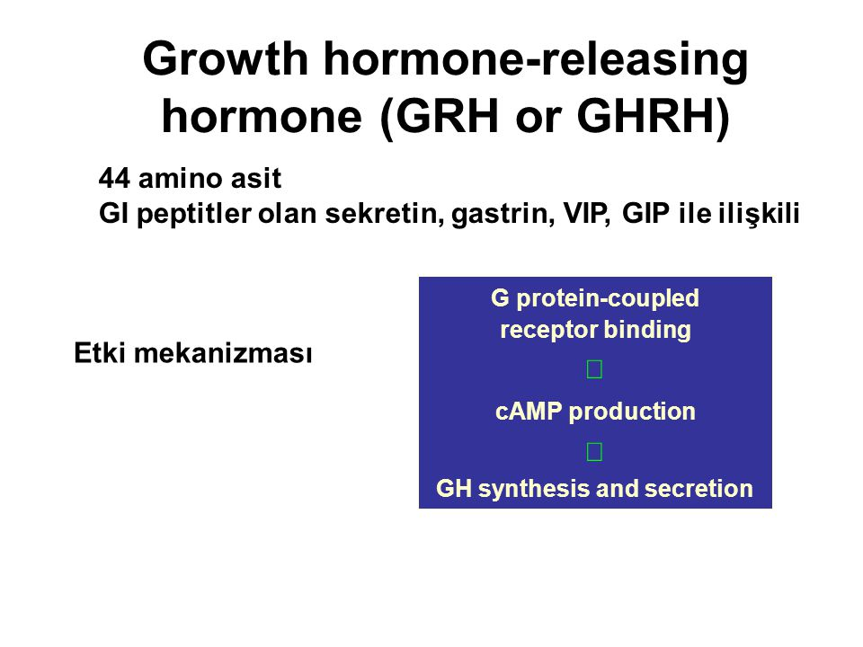 Growth hormone-releasing hormone (GRH or GHRH) 44 amino asit GI peptitler olan sekretin, gastrin, VIP, GIP ile ilişkili G protein-coupled receptor bin