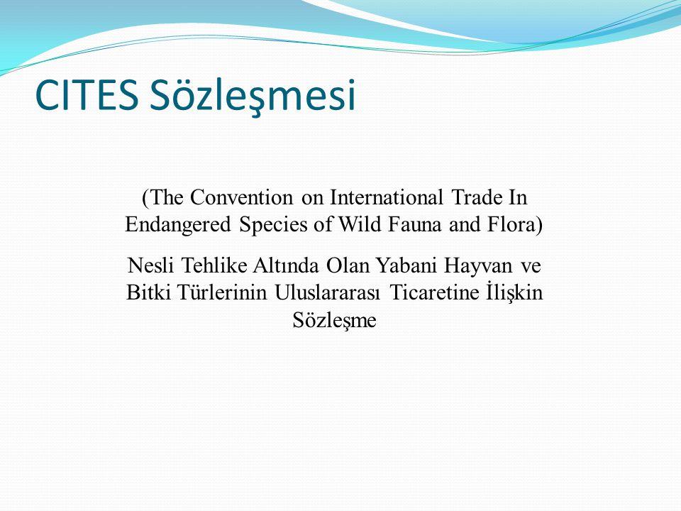 (The Convention on International Trade In Endangered Species of Wild Fauna and Flora) Nesli Tehlike Altında Olan Yabani Hayvan ve Bitki Türlerinin Ulu