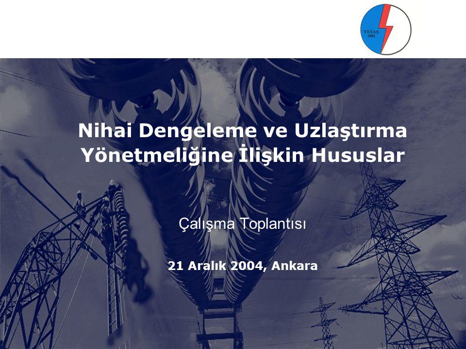 Nihai Dengeleme ve Uzlaştırma Yönetmeliğine İlişkin Hususlar Çalışma Toplantısı 21 Aralık 2004, Ankara