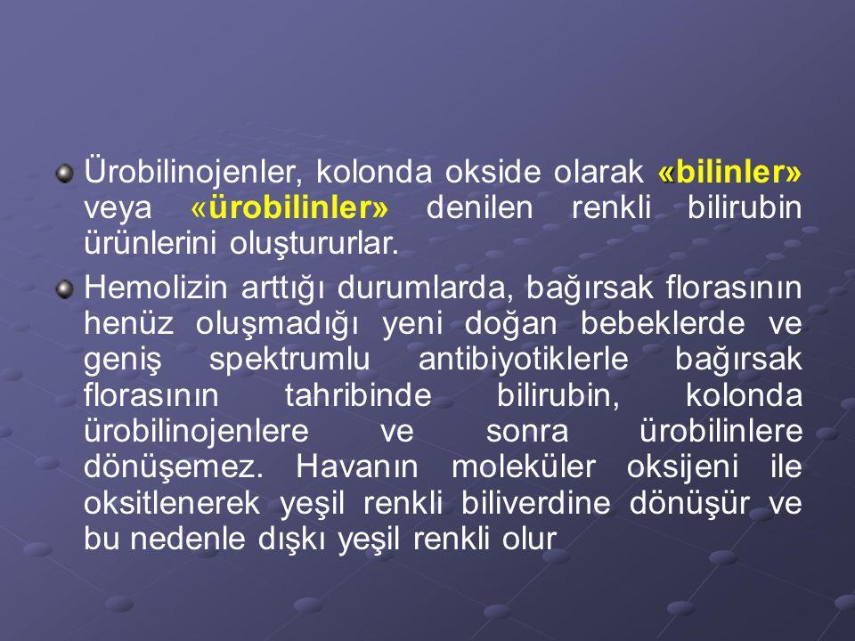 « Ürobilinojenler, kolonda okside olarak «bilinler» veya «ürobilinler» denilen renkli bilirubin ürünlerini oluştururlar.