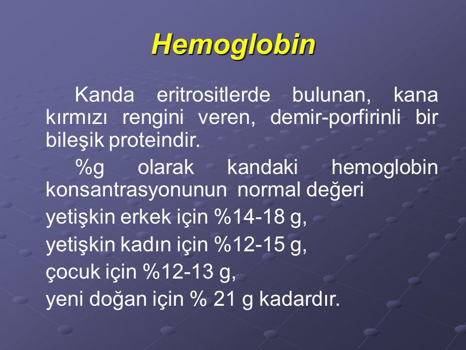 Hb, 4 adet globulin proteini ile 4 adet hem adlı yapıdan oluşur.