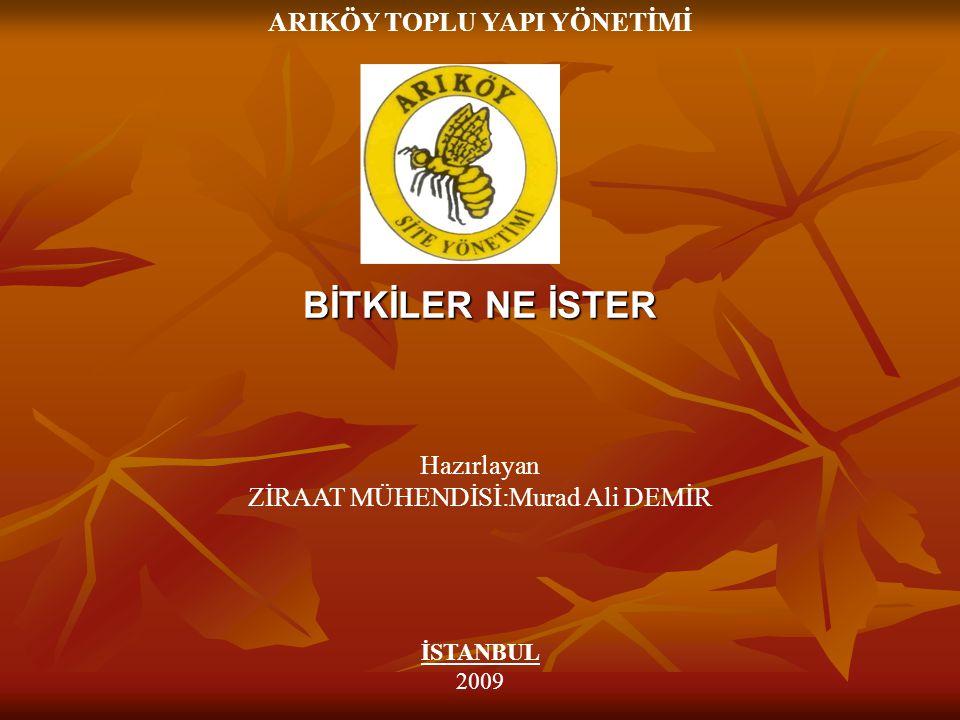 BİTKİLER NE İSTER Hazırlayan ZİRAAT MÜHENDİSİ:Murad Ali DEMİR ARIKÖY TOPLU YAPI YÖNETİMİ İSTANBUL 2009