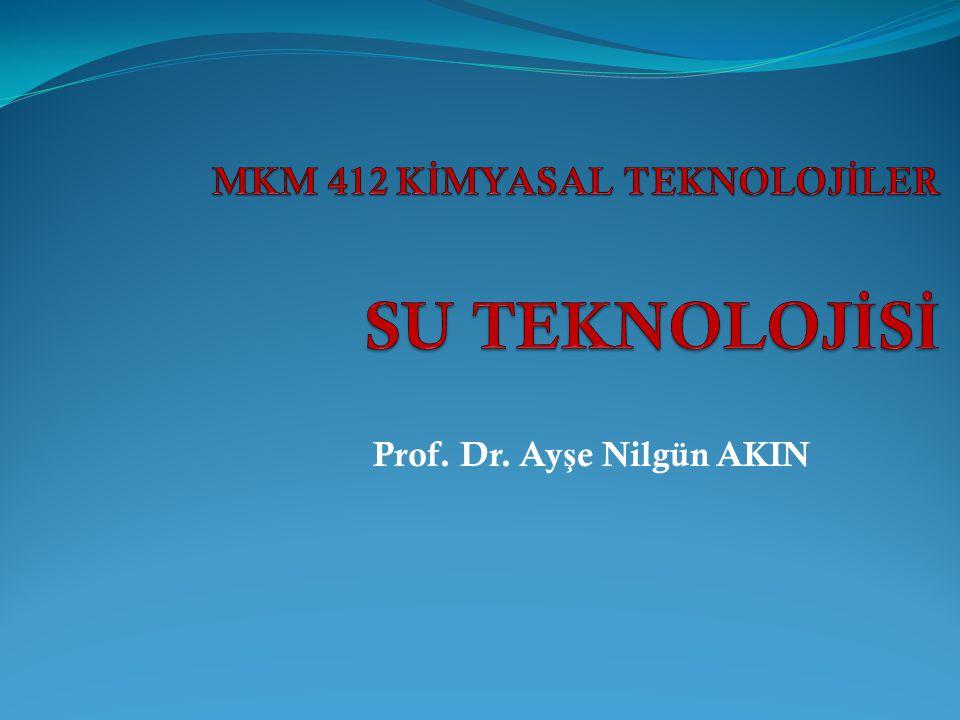 Prof. Dr. Ay ş e Nilgün AKIN