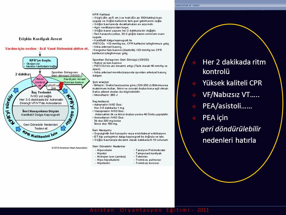 A s i s t a n O r y a n t a s y o n E ğ i t i m i - 2011  Her 2 dakikada ritm kontrolü  Yüksek kaliteli CPR  VF/Nabızsız VT…..  PEA/asistoli……  P