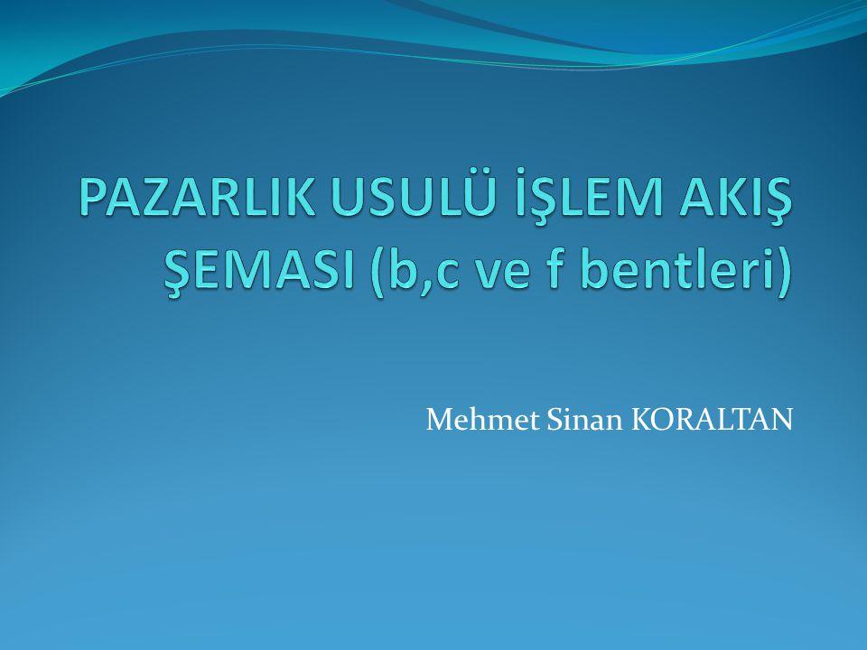 Mehmet Sinan KORALTAN