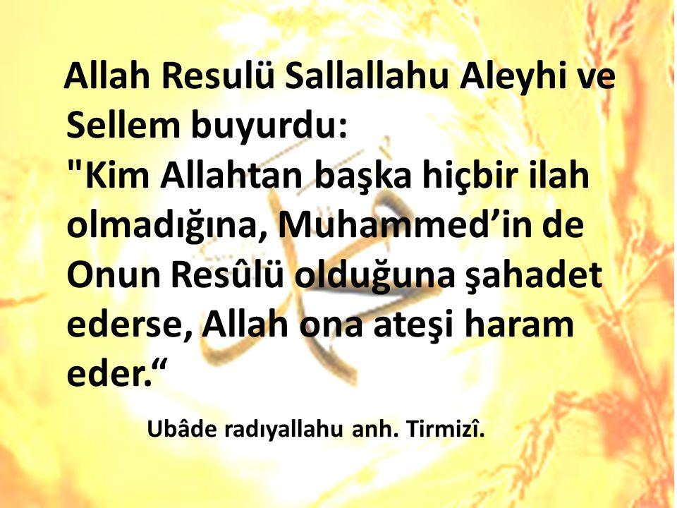 Allah Resulü Sallallahu Aleyhi ve Sellem buyurdu: