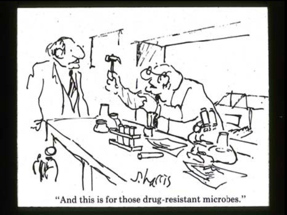 Yeni ortaya çıkan patojenler nedeniyle Yeni ortaya çıkan patojenler nedeniyle Yoğun bakım,acil, vb.