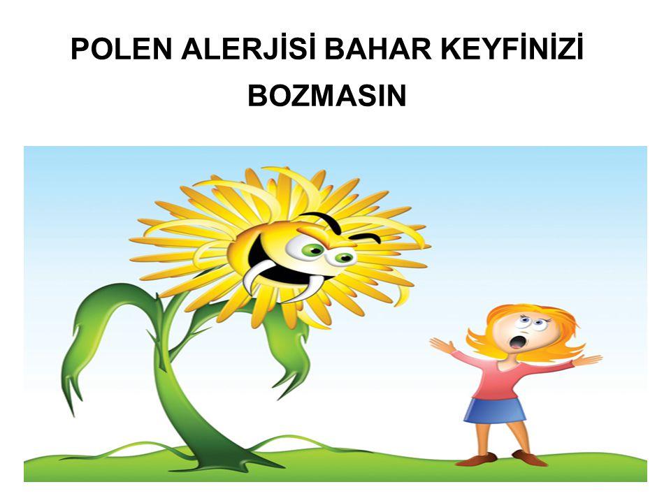 POLEN ALERJİSİ BAHAR KEYFİNİZİ BOZMASIN