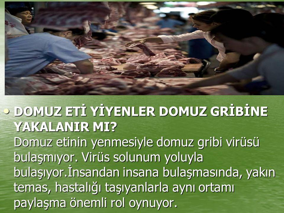 DOMUZ ETİ YİYENLER DOMUZ GRİBİNE YAKALANIR MI? Domuz etinin yenmesiyle domuz gribi virüsü bulaşmıyor. Virüs solunum yoluyla bulaşıyor.İnsandan insana