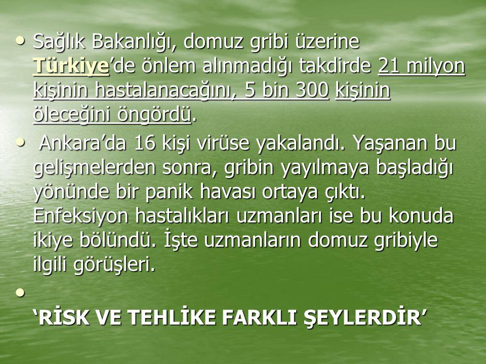 Sağlık Bakanlığı, domuz gribi üzerine Türkiye'de önlem alınmadığı takdirde 21 milyon kişinin hastalanacağını, 5 bin 300 kişinin öleceğini öngördü. Sağ