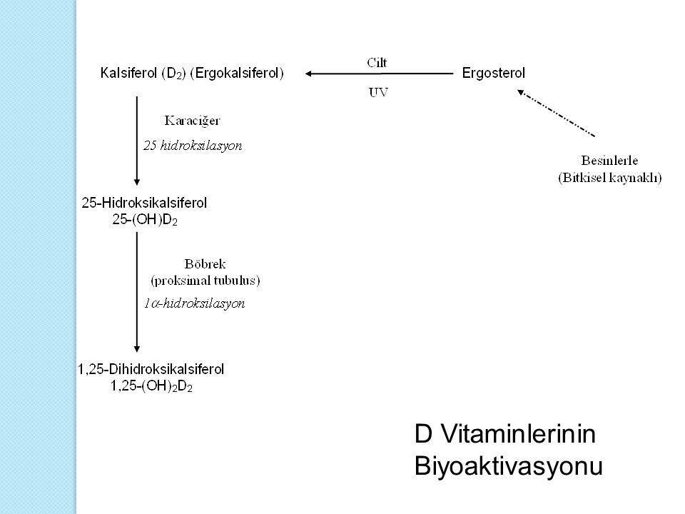 Karaciğer ve Böbrek Hastalıkları  Karaciğer ve böbrekte, deriye gelen güneş ışını ile oluşan veya gıdalar yoluyla aldığımız D vitaminini etkin hale dönüştüren enzimler bulunmaktadır.