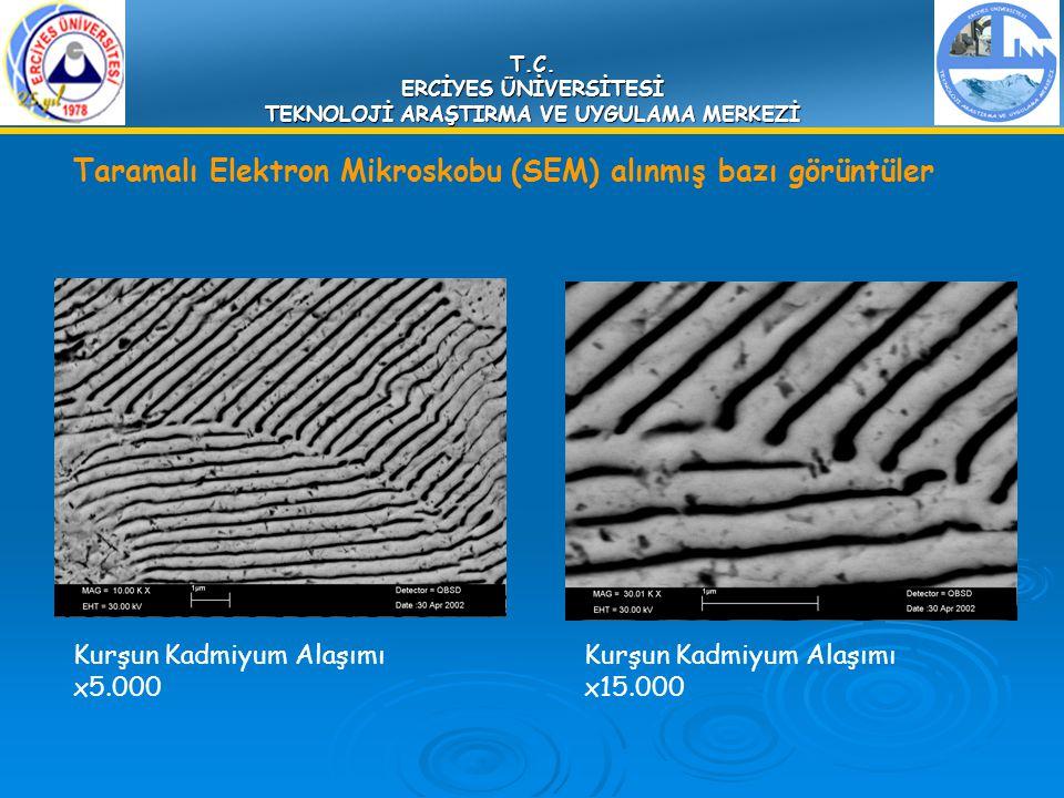T.C. ERCİYES ÜNİVERSİTESİ TEKNOLOJİ ARAŞTIRMA VE UYGULAMA MERKEZİ Taramalı Elektron Mikroskobu (SEM) alınmış bazı görüntüler Kurşun Kadmiyum Alaşımı x