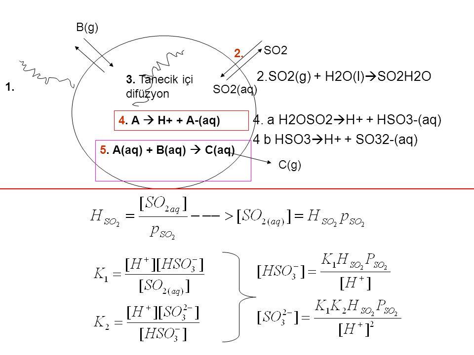 1. 2. 3. Tanecik içi difüzyon 4. A  H+ + A-(aq) SO2 SO2(aq) B(g) 5. A(aq) + B(aq)  C(aq) C(g) 2.SO2(g) + H2O(l)  SO2H2O 4. a H2OSO2  H+ + HSO3-(aq