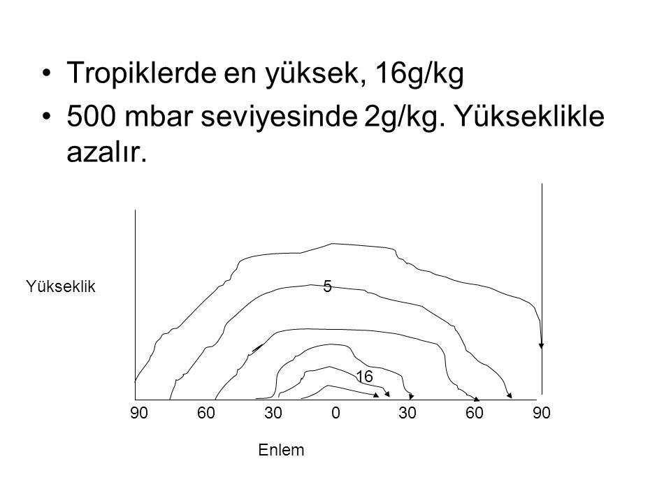 Tropiklerde en yüksek, 16g/kg 500 mbar seviyesinde 2g/kg.