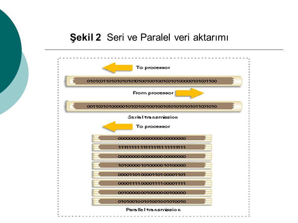 Paralel yuvalar, 25 konnektörlü (RS232C standardı) yuvalardır ve Yazıcı, harici sabit disk, CD yazıcı ve benzeri aletlerin bağlandığı ve verilerin paralel olarak aktarıldığı yuvalardır.