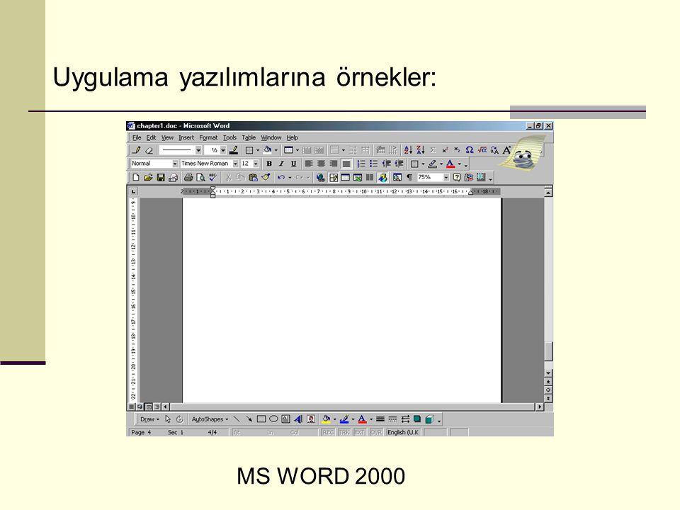 Uygulama yazılımlarına örnekler: MS WORD 2000