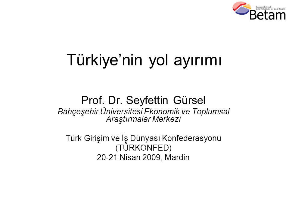 Türkiye'nin yol ayırımı Prof. Dr.