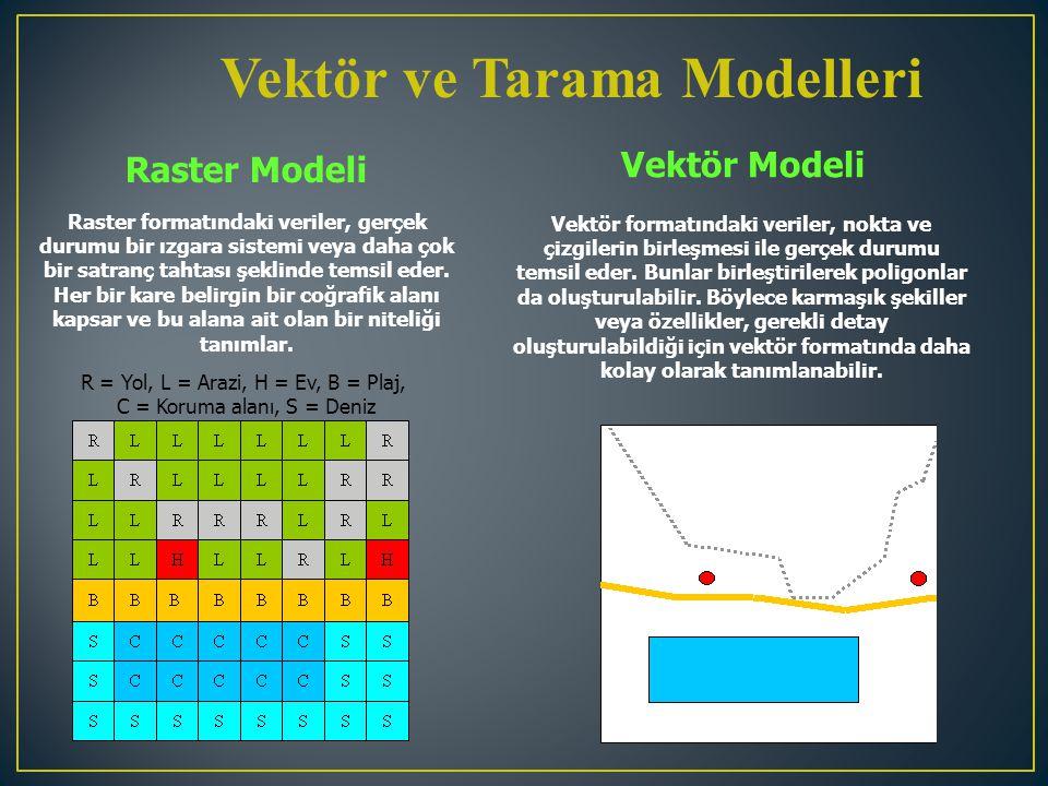 Vektör ve Tarama Modelleri Raster Modeli Vektör Modeli Raster formatındaki veriler, gerçek durumu bir ızgara sistemi veya daha çok bir satranç tahtası