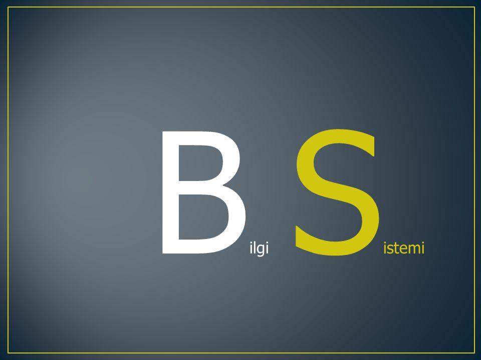 B ilgi S istemi