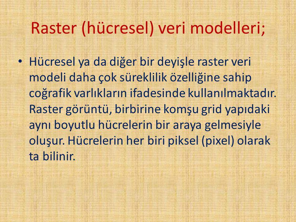 Raster (hücresel) veri modelleri; Hücresel ya da diğer bir deyişle raster veri modeli daha çok süreklilik özelliğine sahip coğrafik varlıkların ifades